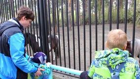 NOVOSIBIRSK ROSJA, Maj, - 1,2016: rodzina przy zoo w klauzurze zbiory