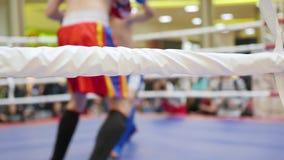 NOVOSIBIRSK, RUSIA - octubre 15,2016: el torneo en kickboxing en el anillo almacen de metraje de vídeo