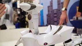 NOVOSIBIRSK, RUSSIA - 21 FEBBRAIO 2018: Expo di robotica Granchio 4k del giocattolo del robot video d archivio
