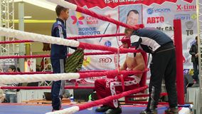NOVOSIBIRSK, RUSSIA - October 15,2016: the tournament in kickboxing in the ring stock video footage