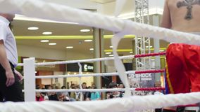 NOVOSIBIRSK, RUSSIA - October 15,2016: the tournament in kickboxing in the ring stock video