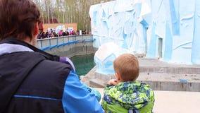 NOVOSIBIRSK, RUSSIE - MAI 1,2016 : famille au zoo regardant les ours blancs banque de vidéos