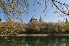 Novospassky修道院在莫斯科,俄罗斯 免版税图库摄影