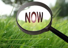 Now. Magnifying glass with the word now on grass background. Selective focus Royalty Free Stock Photography