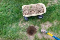 Nowa dziura kopał w gazonie zasadzać drzewa Zdjęcie Stock
