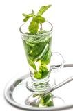 Nowa herbata na białym tle z metal łyżką, wyśmienicie nowa herbata Zdjęcie Stock
