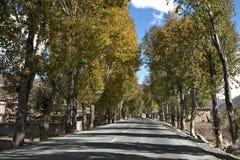 Nowa i piękna droga w średniogórzu. Obrazy Royalty Free