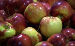 Nowa Jabłczana tekstura obrazy stock
