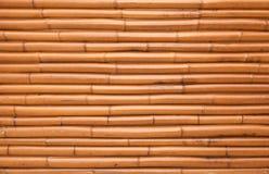 Nowa olśniewająca bambus ściany tła tekstura Obrazy Stock