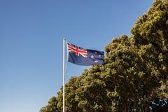 Nowa Zelandia flaga Z Pohutukawa Fotografia Stock