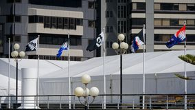 Nowa Zelandia flagi opcje turniejowe fotografia stock