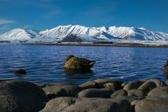 Nowa Zelandia jeziora pasmo górskie Obrazy Royalty Free