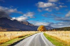 Nowa Zelandia krajobraz, Południowa wyspa zdjęcia royalty free
