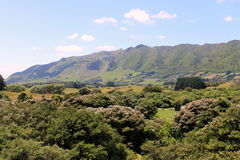 Nowa Zelandia krajobraz - Tararua pasma Zdjęcie Royalty Free