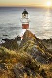 Nowa Zelandia latarni morskiej przylądka palliser fotografia stock