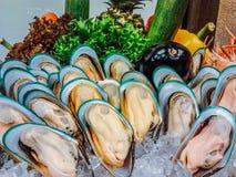 Nowa Zelandia mussels bufet w owoce morza restauraci zdjęcie stock