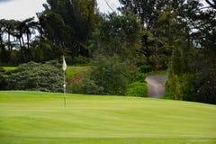Nowa Zelandia pola golfowego flaga w dziurze Obraz Royalty Free