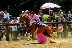 Nowa Zelandia rodeo - Lufowa rasa Zdjęcie Royalty Free