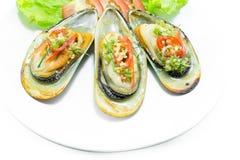 Nowa Zelandia zieleni mussels na bielu talerzu Zdjęcia Royalty Free