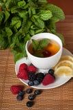 Nowa ziołowa herbata zdjęcie stock