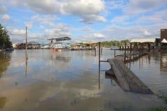 Nowe Belgrade powodzie Zdjęcie Royalty Free