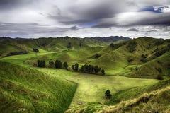 nowe Zelandii Zdjęcia Royalty Free
