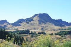 nowe Zelandii Zdjęcie Stock