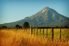 nowe Zelandii krajobrazu Obrazy Stock