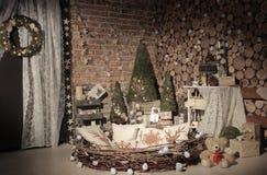 Nowego roku drzewny naturalny studio Obraz Stock
