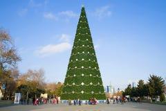 Nowego Roku ` s świerczyna w nadmorski parku na pogodnym popołudniu, Baku Obraz Royalty Free