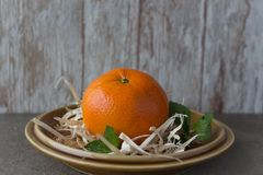 Nowego Roku ` s Tangerine Zdjęcia Stock