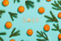 Nowego roku skład 2019 Boże Narodzenia obramiają z tangerines, jodeł gałąź i drewnianym literowaniem 2019 z uśmiechem, Mieszkanie Zdjęcia Stock