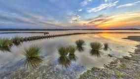 Nowi ekologiczni mokrzy ławka banki Obrazy Royalty Free