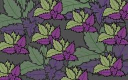 Nowi liście purpura i purpury tło różowa ilustracja Fotografia Royalty Free