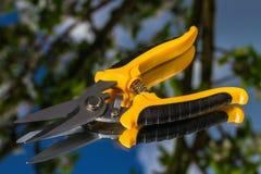 Nowi ogrodowi nożyce Zdjęcia Royalty Free