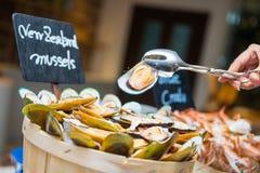 Nowi Zealand mussels na drewnianym pucharze zdjęcie royalty free