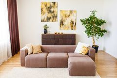 Nowożytny żywy izbowy pojęcie Piękne poduszki stawiająca dalej brąz kanapa Dekoraci pojęcie zdjęcie stock