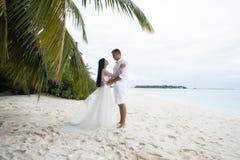 Nowożeńcy całują pod drzewkiem palmowym na wspaniałej plaży z białą piaska i turkusu wodą zdjęcie stock