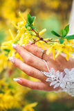 Nowożeńcy ręka Obrazy Royalty Free