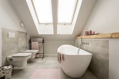 Nowożytna żeńska łazienka obrazy royalty free