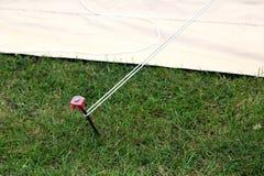 Nowożytna stal i plastikowy namiotowy czop młotkujący w trawę dołączamy zdjęcie stock
