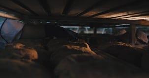 Nowożytnej piekarni piekarniani szczegóły biorą świeżego piec organicznie chleb z ziarnami od przemysłowej półki zbiory wideo