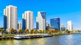Nowożytni wysocy wzrostów kondominia i biurowi wysocy wzrostów budynki przy Boompjeskade wzdłuż Nieuwe Maas w Rotterdam zdjęcie royalty free