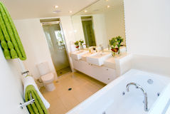 nowożytny łazienka luksus Zdjęcie Stock