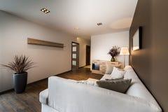 Nowożytny żywy pokój w brązowym kolorze obrazy royalty free