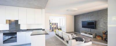 Nowożytny żywy pokój z lekką kanapą obraz stock
