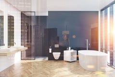 Nowożytny czarny łazienki wnętrze, klozet, noc ilustracji