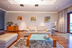Nowożytny elegancki żywy pokój fotografia royalty free