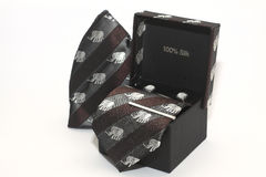 Nowożytny krawat w otwartym pudełku na białym tle fotografia stock