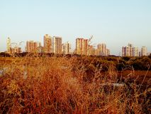 nowożytny miasto głąbika widok obraz royalty free